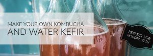 How to Make your own kombucha and water kefir workshop